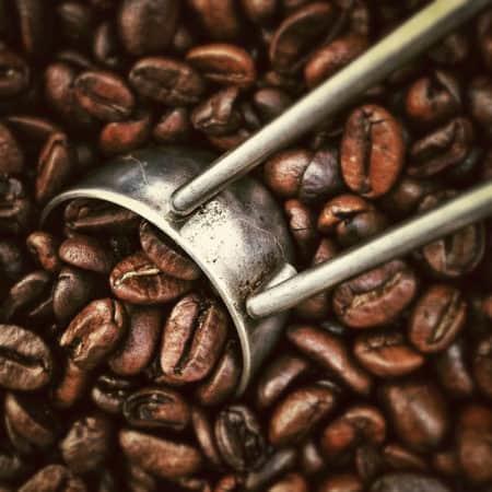 Zubereitung Latte macchiato aus Espresso Bohnen